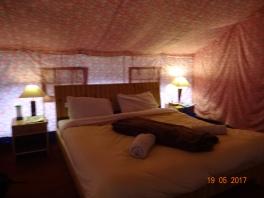 The Living cum bedroom